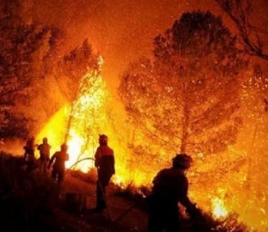 Wildfires Northern Thailand