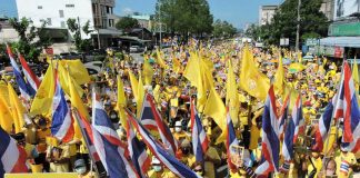 Crowds Gather to Support The Monarchy