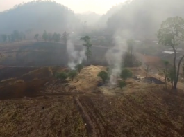 Crop Burning Chiang Mai