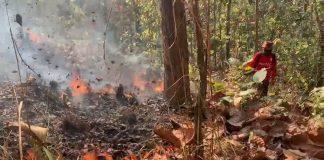 Chiang Mai Fires